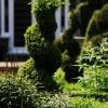 topiary-heading-4